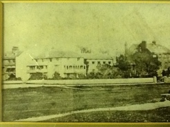 Surrey Cottage, Surrey house in background
